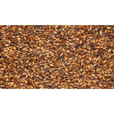 Карамельный 200 190-210 EBC - Курский солод